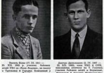Василь Білас (17.09.1911–23.12.1932)