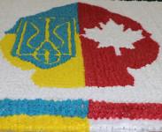 Канадська діаспора торує Україні дорогу в НАТО