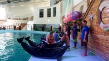 У Трускавці відновлюватимуть бійців з допомогою дельфінотерапії