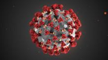 Можливі алгоритми діяльності держави під час пандемії вірусу