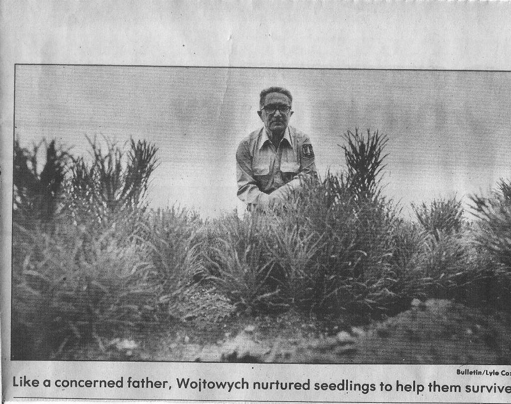 Фототграфія зі служби в лісництві,  1983 рік