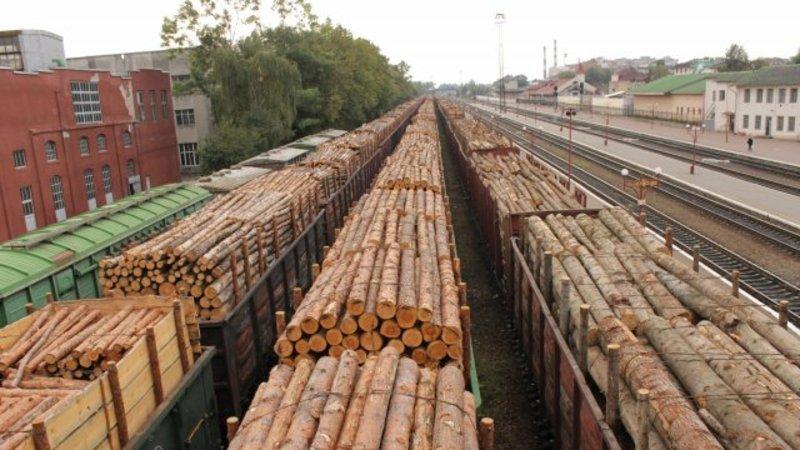 wood-contrabanda