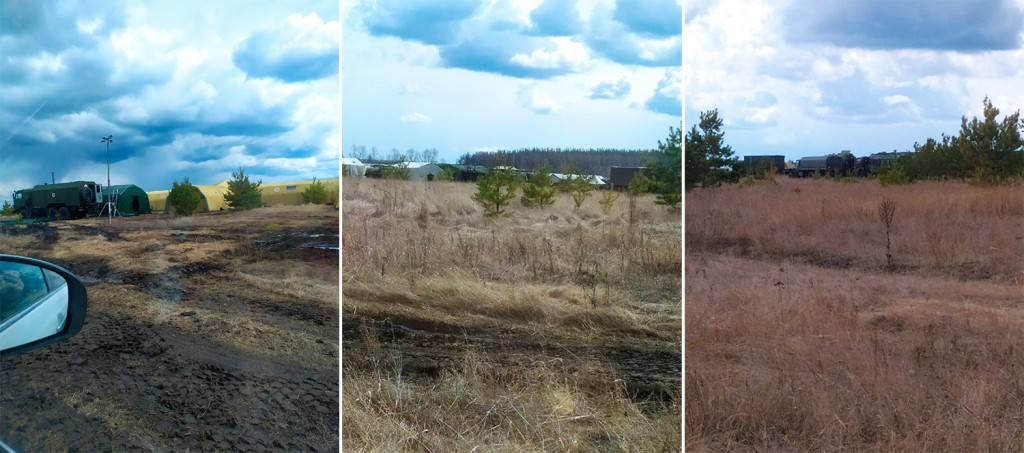 field-collage